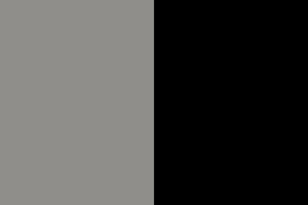 Gris y negro